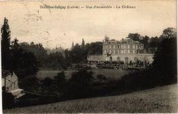 CPA CHATILLON - COLIGNY - Vue D'ensemble - Le Chateau (228499) - Chatillon Coligny