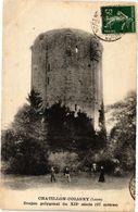 CPA CHATILLON-COLIGNY - Donjon Polygonal Du XII Siecle (228546) - Chatillon Coligny