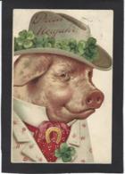 CPA Cochon Pig Position Humaine Habillé Circulé - Animali Abbigliati