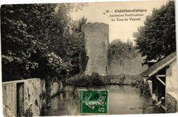 CPA CHATILLON-COLIGNY-Anciennes Fortifications-La Tour Du Vauvert (264574) - Chatillon Coligny