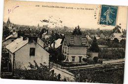 CPA CHATILLON-COLIGNY-La Vue Générale (264583) - Chatillon Coligny