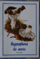 Petit Calendrier De Poche 2003 Champignon  Hygrophore De Mars Rohan Pharmacie - Calendars