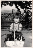 Photo Originale Portrait D'une Très Jeune Cueilleuse De Champignons & Son Gros Panier Plein à Ras Bord - Personnes Anonymes