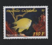 W28 Nouvelle Calédonie 2014 °° 1218 Poisson - Nuevos