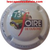 BELLE CAPSULE CHAMPAGNE NICOLAS FEUILLATTE 73EME FOIRE DE CHALONS NEWS - Sammlungen