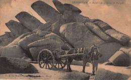 CPA BRIGNOGAN - Rochers De La Grève De Porspol - Brignogan-Plage