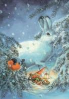 Bird - Elf Is Sleeping - Rabbit - Hare - Bullfinch In Winter Landscape By Raimo Partanen - Kerstmis