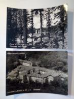2 Cartoline CAMALDOLI Viaggiate 1956 E 1964 Eremo E Panorama Ingresso Albero Ristorante - Arezzo