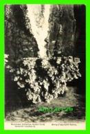 SYDNEY, AUSTRALIE - SUSPENDED CRYSTALS, ORIENT CAVE - SERIES 31, JENOLAN B. - KERRY - - Sydney