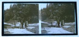 Plaque De Verre - Vue Stéréoscopique - Fontaine De La République - Animée - Glasdias