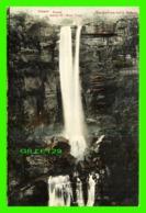 SYDNEY, AUSTRALIE - FITZROY FALLS - SERIES 32, MOSS VALE - KERRY - - Sydney