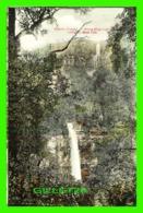 SYDNEY, AUSTRALIE - MERYLA FALLS - SERIES 32, MOSS VALE - KERRY - - Sydney
