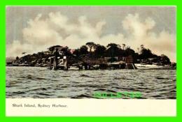 SYDNEY, AUSTRALIE - SHARK ISLAND, SYDNEY HARBOUR - HARDING & BILLING'S - - Sydney