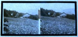 Plaque De Verre - Vue Stéréoscopique - Vue Sur Sainte Claire - St - Vue Générale - Glasdias