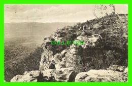 SYDNEY, AUSTRALIE - MOUNT YORK, BLUE MOUNTAINS, N.S.W. - TRAVEL IN 1906 - SWAIN & CO - - Sydney