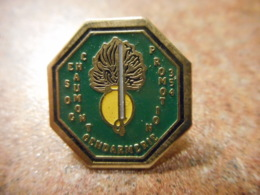 A039 -- Pin's Gendarmerie Chaumont Promotion 354 - Police