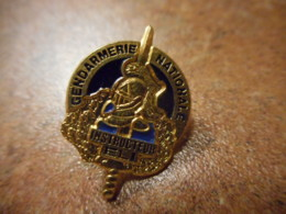 A039 -- Pin's Gendarmerie Nationale Instructeur ELI -- Exclusif Sur Delcampe - Police