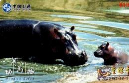 CHINA. FAUNA. HIPOPOTAMO - HIPPOPOTAMUS. JD193-(4-3). (936) - Tarjetas Telefónicas