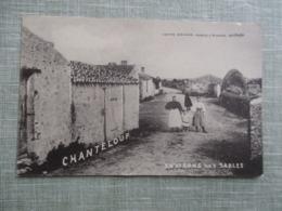 CPA 85 ENVIRON DES  SABLES D'OLONNE CHANTELOUP ANIMEE - Sables D'Olonne
