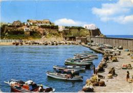 FORIO D'ISCHIA  NAPOLI  Chiesetta Del Soccorso  Molo  Barche  Pescatori - Napoli (Naples)