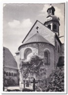 Hildesheim, Der 1000jährige Rosenstock - Hildesheim