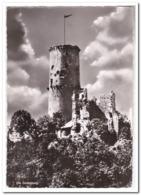 Bad Godesberg, Die Godesburg - Andere