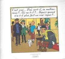 "1 EX-LIBRI "" TINTIN ""  HERGÉ-MOULINSART 2011   Extrait De Vol 740 Pour Sydney  -  Planche 2  Strip 4 - Altri Oggetti Fumetti"