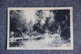 MAUZAC - Sous Bois Artistique Sur Le Bord De La Garonne - Sonstige Gemeinden