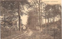 Ottignies NA18: Avenue Gergeay - Ottignies-Louvain-la-Neuve