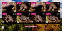 GUYANA, 2016,MNH, WWF, ARMADILLOS, SHEETLET OF 2 SETS, HIGH FV - W.W.F.