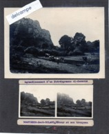 Photo  -  Agrandissement D'un Stéréogramme -  DOMPIERRE - SAUT - ROLAND (35)  Patour Et Son Troupeau - Places
