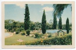 AUSTRALIA - THE OASIS TOURIST GARDENS, BRISBANE - Townsville