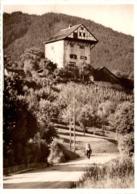 Burg Altstätten Nr. 117 - SG St. Gallen