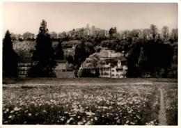 Gymnasium Marienburg, Steyler Missionare - Rheineck SG - SG St. Gallen