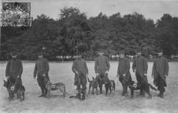 FONTAINEBLEAU AVON CARTE PHOTO CHIENS SANITAIRES ET SOLDATS - Fontainebleau