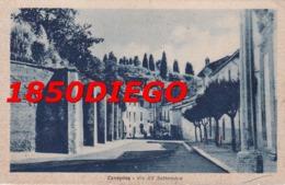 CANEPINA - VIA XX SETTEMBRE   F/PICCOLO VIAGGIATA - Viterbo