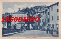 CANEPINA - VIA ROMA  F/PICCOLO VIAGGIATA ANIMAZIONE - Viterbo