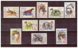URSS644) 1965-Cani Di Razza-Unificato 2917-26 Serie Cpl. 10 Val.MNH** - Nuovi