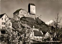 Schloss Sargans Mit Falknis (3781) * 1. 8. 1948 - SG St. Gallen