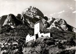 Schloss Sargans (SG) - Blick Zum Gonzen (30104) * 14. 4. 1972 - SG St. Gallen