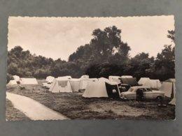 Postkaart Hofstade Camping TCB Rijsdomein - Zemst