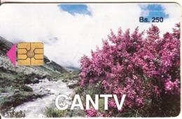 VENEZUELA(chip) - Landscape, Trinitaria, 09/92, Used - Paisajes