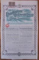 RUSSIE - THE EMBA CASPIAN OIL COMPANY - TITRE DE DE 25 ACTIONS DE 1 £ - 1916  - DECO + 2 TIMBRES FISCAUX 1917 - Actions & Titres