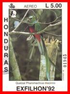 HONDURAS HOJITA AÑO 1992  EXFILHON 92 - Honduras