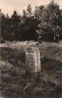 RENNSTEIGSTEIN AM RENNSTEIG-THUR.WALD  -VIAGGIATA 1962-REAL PHOTO - Neuhaus