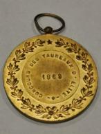 Médaille Luxembourg,Concours Des Taureaux D'élite 1969 - Tokens & Medals