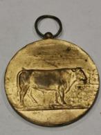 Médaille Luxembourg ,Concours Des Taureaux D'élite 1968 - Tokens & Medals