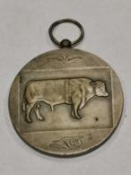 Médaille Luxembourg ,Concours Des Taureaux D'élite 1972 - Tokens & Medals