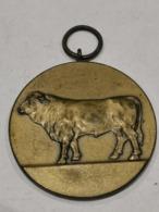 Médaille Luxembourg , 30 Concours Des Taureaux D'élite 1975 - Tokens & Medals