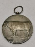 Médaille Luxembourg , 26 Concours Des Taureaux D'élite 1971 - Tokens & Medals